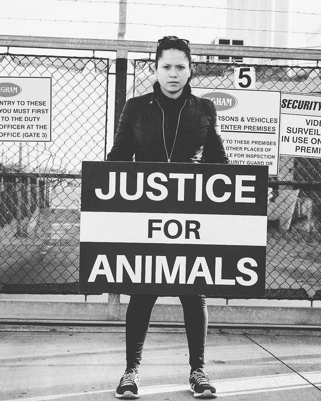 Visibilizar la crueldad animal para concientizar: el activismo de AlejandraRamos